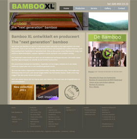 Portfolio: Webdesign